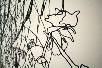 Flowers (2)