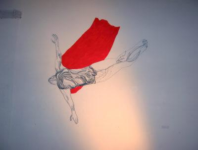 Skakac-u-vodu-sa-crvenim-plastom-NI (1)